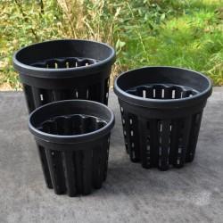 'Ercole' potten